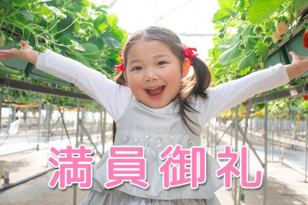 ピアノ生徒60人で満員! 愛知県のピアノ教室 Y先生の事例♪